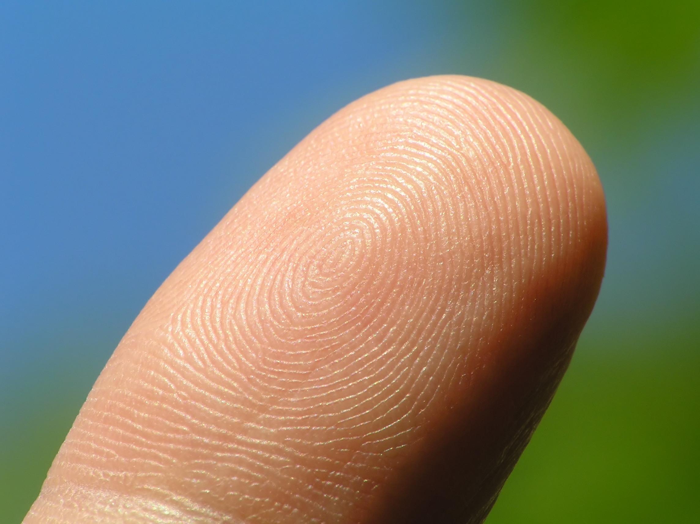 Mobeus backs fingerprint scanner developer Biosite
